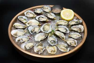 Medium oysters 24